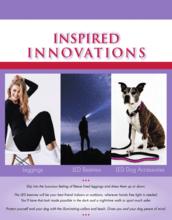 Inspired Innovations Fundraising Brochure
