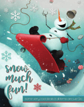 Snow Much Fun Catalog Fundraiser